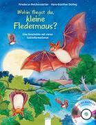 Cover-Bild zu Wohin fliegst du, kleine Fledermaus? von Reichenstetter, Friederun