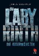 Cover-Bild zu Die Auserwählten - Im Labyrinth (eBook) von Dashner, James