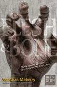 Cover-Bild zu Maberry, Jonathan: Flesh & Bone