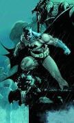 Cover-Bild zu Loeb, Jeph: Absolute Batman: Hush