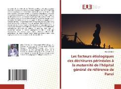 Cover-Bild zu Cishugi, Akili: Les facteurs étiologiques des déchirures périnéales à la maternité de l'hôpital général de référence de Panzi