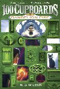 Cover-Bild zu Wilson, N. D.: Dandelion Fire (100 Cupboards Book 2)