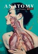 Cover-Bild zu Lachat, Rodolphe (Zusammengest.): Anatomy Rocks: 30 Deluxe Postcards