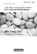 Cover-Bild zu WLI-Hochschule. Lern- und Arbeitsstrategien. Wie lerne ich? Fragebogen von Metzger, Christoph