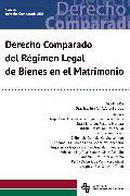 Cover-Bild zu Derecho Comparado del Régimen Legal de Bienes en el Matrimonio (eBook) von Rospigliosi, Enrique Varsi