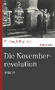 Cover-Bild zu Die Novemberrevolution (eBook) von Regulski, Christoph