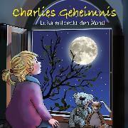 Cover-Bild zu Charlies Geheimnis (Audio Download) von Grothues, Angelika