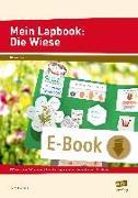 Cover-Bild zu Mein Lapbook: Die Wiese (eBook) von Mönning, Petra