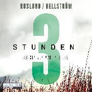 Cover-Bild zu Drei Stunden (Audio Download) von Roslund, Anders