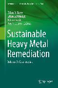 Cover-Bild zu Sustainable Heavy Metal Remediation (eBook) von Lens, Piet N.L. (Hrsg.)