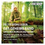 Cover-Bild zu Das geheime Band (Audio Download) von Wohlleben, Peter