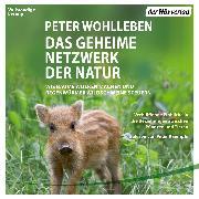 Cover-Bild zu Das geheime Netzwerk der Natur (Audio Download) von Wohlleben, Peter