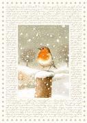 Cover-Bild zu Marjoleins Winterwelt von Bastin, Marjolein (Illustr.)