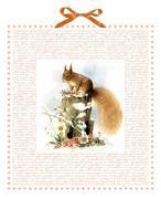 Cover-Bild zu Marjoleins Eichhörnchen im Schnee von Bastin, Marjolein (Illustr.)
