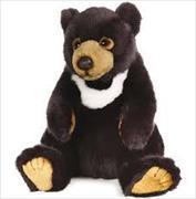 Cover-Bild zu Asiatischer Schwarzbär