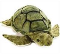 Cover-Bild zu Meeresschildkröte