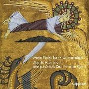 Cover-Bild zu Mein Geist hat sich verwildet von Haas, Alois M.