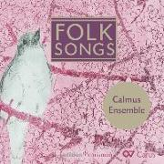 Cover-Bild zu Folk Songs
