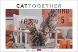 Whiskas Katzenkalender 2022 von Heye (Hrsg.)
