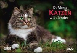 DUMONTS Katzenkalender 2022 - Broschürenkalender - Wandkalender - mit Schulferienterminen - Format 42 x 29 cm von Jorjan, Jette (Beitr.)