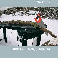 Cover-Bild zu Baltisk Have, Februar von Ahrenkiel, Gitte