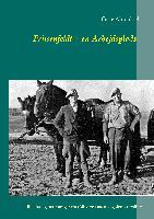 Cover-Bild zu Friisenfeldt - en Arbejdsplads von Ahrenkiel, Gitte