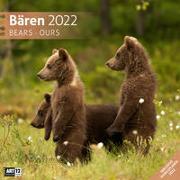 Bären Kalender 2022 - 30x30 von Ackermann Kunstverlag (Hrsg.)