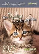 Cover-Bild zu Eine Katze für jeden Tag 2022 Tagesabreißkalender