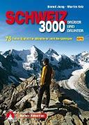 Dreitausender Schweiz - drüber und drunter von Jung, Bernd