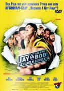 Cover-Bild zu Jay und Silent Bob schlagen zurück von Mewes, Jason