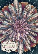 Cover-Bild zu The Illustrated Crystallary Puzzle: Garden Quartz (750 pieces) von Toll, Maia