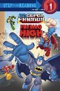 Cover-Bild zu Super Friends: Flying High (DC Super Friends) von Eliopulos, Nick
