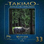 Cover-Bild zu Takimo - 33 -Matura (Audio Download) von Liendl, Peter