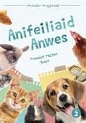 Cover-Bild zu Cyfres Archwilio'r Amgylchedd: Anifeiliaid Anwes von Williams, Sian Elin
