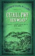 Cover-Bild zu Cyfaill Pwy o'r Hen Wlad? (eBook) von Williams, Rhiannon Heledd