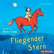 Cover-Bild zu Fliegender Stern von Wölfel, Ursula