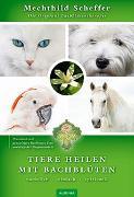 Cover-Bild zu Tiere heilen mit Bachblüten - Praxisbuch von Scheffer, Mechthild