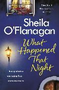 Cover-Bild zu What Happened That Night von O'Flanagan, Sheila