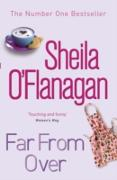 Cover-Bild zu Suddenly Single (eBook) von O'Flanagan, Sheila