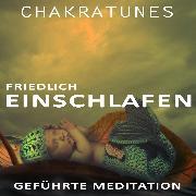 Cover-Bild zu Geführte Meditation (Audio Download) von Kempermann, Raphael