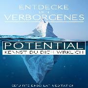 Cover-Bild zu Entdecke Dein verborgenes Potential - Kennst Du Dich wirklich? (Audio Download) von Kempermann, Raphael