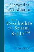 Cover-Bild zu Eine Geschichte von Sturm und Stille von Friedmann, Alexandra