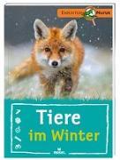 Cover-Bild zu Tiere im Winter von van Saan, Anita