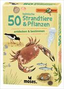 Cover-Bild zu 50 heimische Strandtiere & Pflanzen von Müller, Thomas