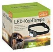 Cover-Bild zu LED Kopflampe
