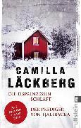 Cover-Bild zu Die Eisprinzessin schläft / Der Prediger von Fjällbacka (eBook) von Läckberg, Camilla
