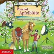 Cover-Bild zu Ponyhof Apfelblüte. Ladys glanzvoller Auftritt von Young, Pippa