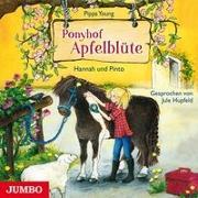 Cover-Bild zu Ponyhof Apfelblüte 04. Hannah und Pinto von Young, Pippa