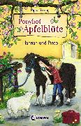 Cover-Bild zu Ponyhof Apfelblüte 4 - Hannah und Pinto (eBook) von Young, Pippa