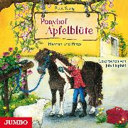 Cover-Bild zu Ponyhof Apfelblüte 4. Hannah und Pinto (Audio Download) von Young, Pippa